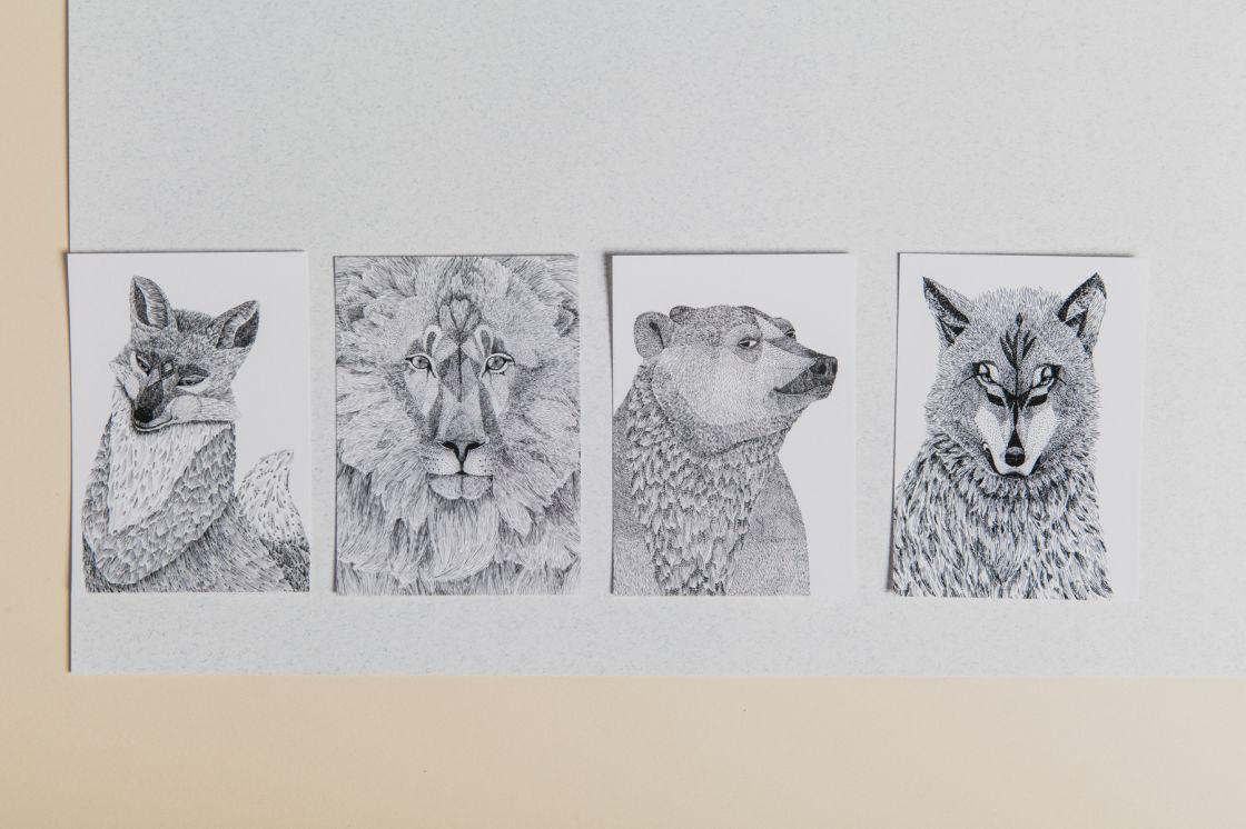 Chlupaté pohlednice